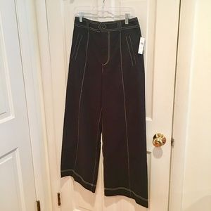 Anthropologie Brand Wide-Leg Black Pants 30 NWT